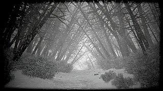 Horror nach wahren Begebenheiten - KHOLAT Gameplay [01] [Deutsch/German] Horror Game