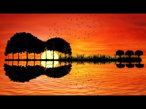 Relaxing Guitar Music - Acoustic - Calming Music for Stress Relief, Studying