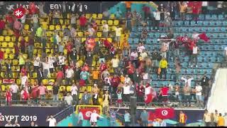 فرحة هستيرية لجماهير تونس بالمدرجات بعد هدف الخنيسي ضد غانا