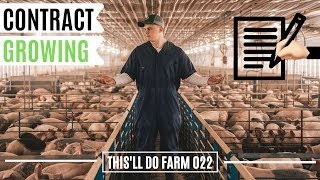 CONTRACT Pig Farming For Beginners | This'll Do Farm Vlog 022