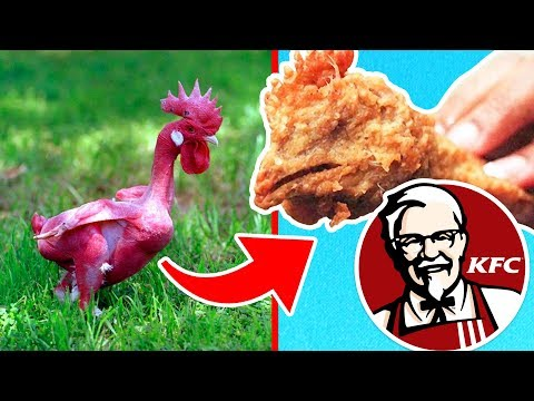 Top 10 Disturbing Secrets KFC Doesn't Want You To Know