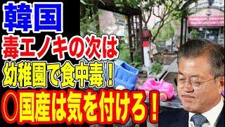 🇰🇷毒エノキを出した韓国が幼稚園で食中毒!…【韓国ニュース:韓国の反応】