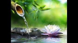 ◇肉体は やがて消えゆく=瞑想+学術=心は宇宙転生へ=Ngo国際大学連合=NIUC=Ngo International Universitry Com thumbnail