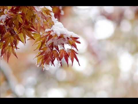 """Осень (""""Когда сквозная паутина...""""), Фет А."""