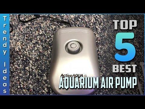 Top 5 Best Aquarium Air Pumps Review In 2020