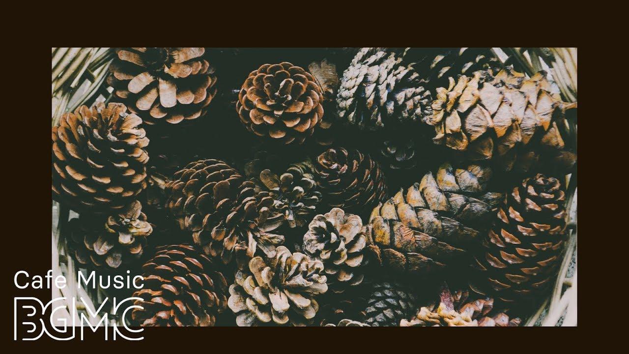 Fall Jazz & Bossa Nova — Relax Autumn Smooth Jazz Accordion Music