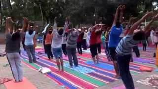 Celebration of First International Yoga Day