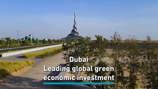 Why Dubai is investing in a green economy