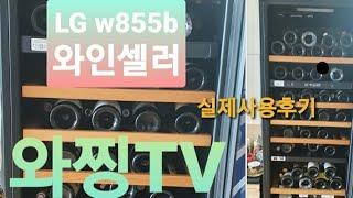 [와찡TV] LG 85병 와인셀러 W855B 리뷰