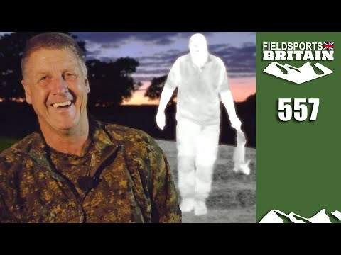 Fieldsports Britain - Crow Lights Up The Rabbits