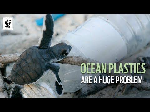 OCEAN PLASTICS ARE A HUGE PROBLEM