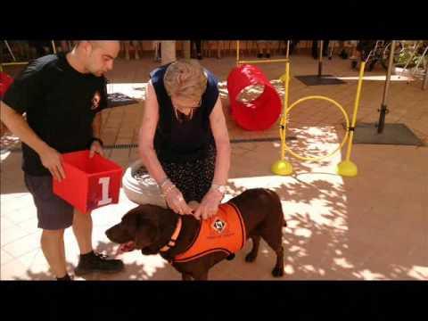 A.T.A.GI   Sesion de Terapia Asistida con Animales