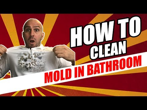Learn To (Clean) MOLD In The Bathroom Like A Professional