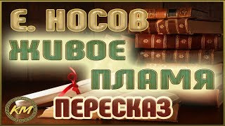 Живое ПЛАМЯ. Евгений Носов