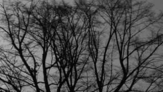 Cemetery Of Scream -Prolog,deszcz jesienny