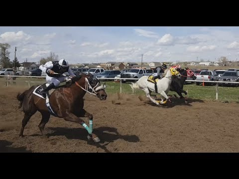 Unlicensed Horse Racing in Colorado