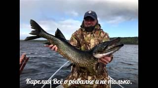 Озеро Спининг Хариус Щука Трофейная рыбалка на озере