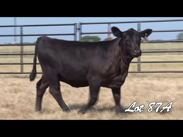 Pollard Farms Lot 87A