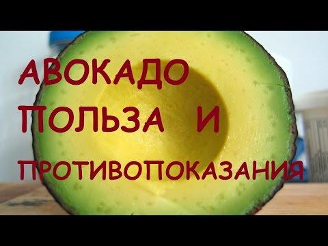 Авокадо. Полезные свойства авокадо. Рецепты блюд с авокадо.