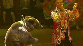 В Воронежском цирке заканчиваются гастроли шоу Гии Эрадзе «Баронеты»