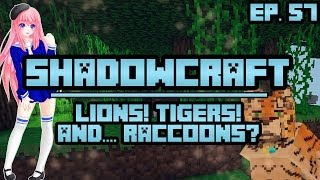 Lions! Tigers! and.. Raccoons..?   ShadowCraft   Ep. 57