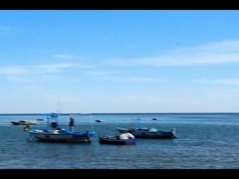 Djerba: Fishing