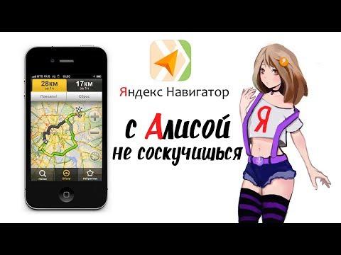 Яндекс навигатор и Алиса голосовой помощник