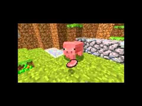 PIG!!!!