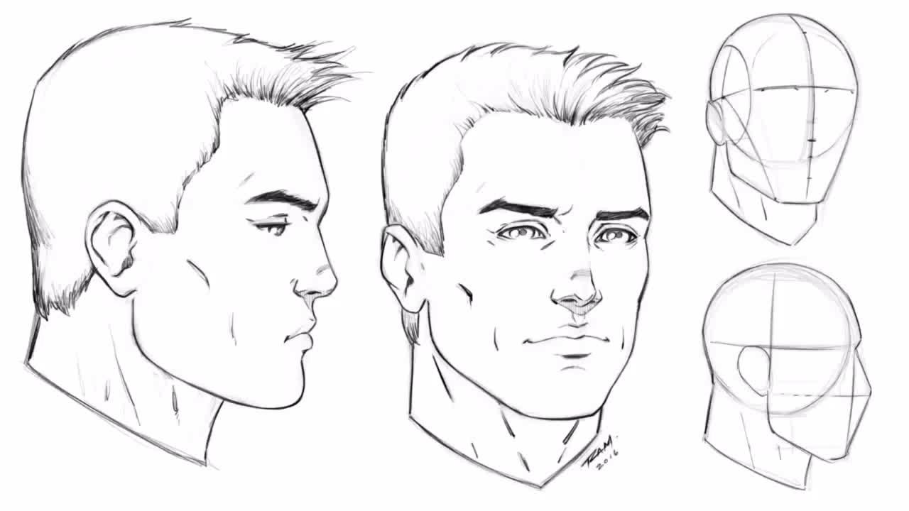 how to draw the male face angle and profile view step by