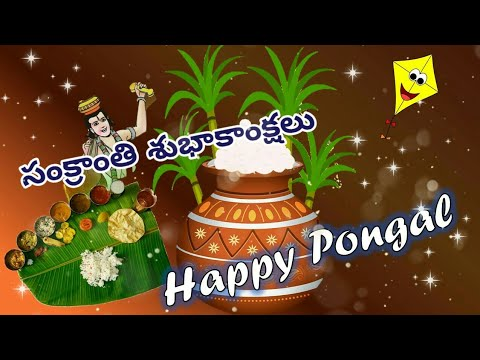 happy-sankranti-2020/happy-pongal-video/sankranti-wishes