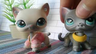 LPS: Коллекция стоячих кошек |
