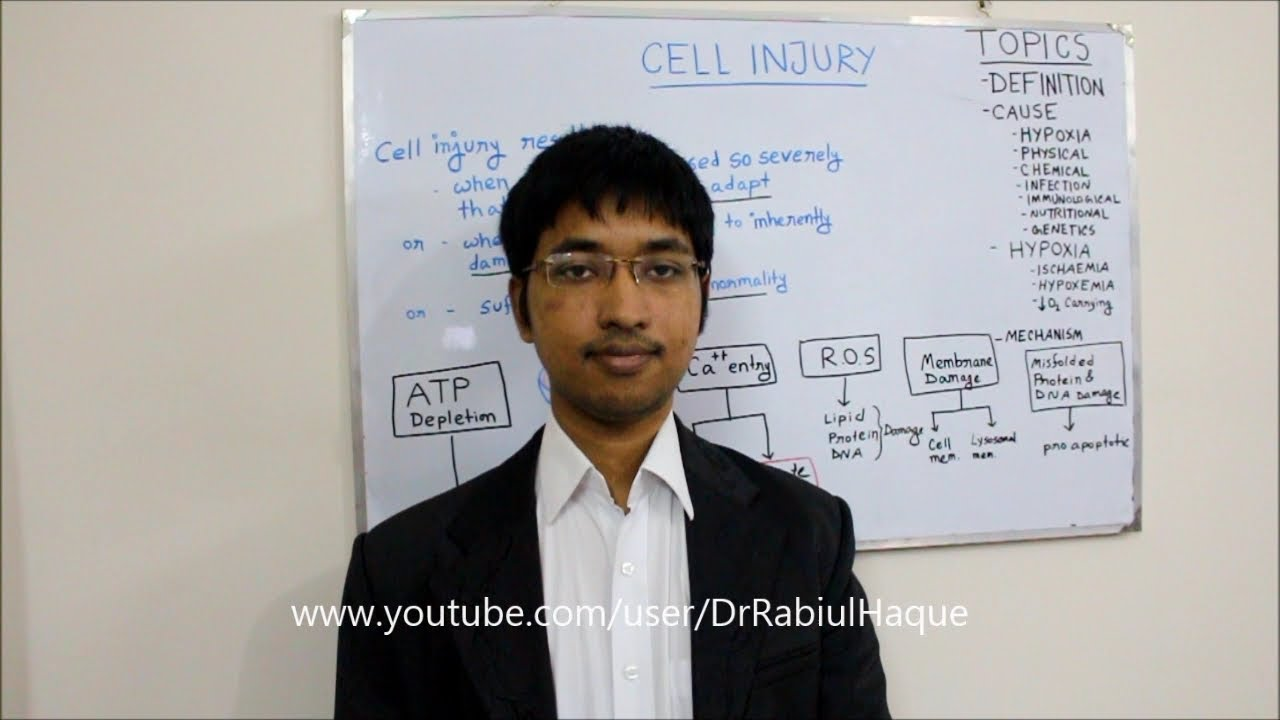Cell Injury ( Part 1 ) : Definition, Causes, Hypoxia, Different Mechanisms  of Cell Injury (HD)