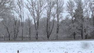Crazy Illinois Weather - From 80 Degrees to Snow in just a few days