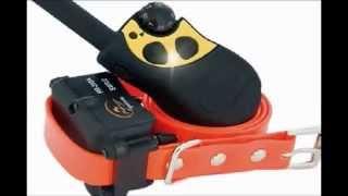 Pet Products Online   Sportdog 400 Field Trainer   Dog Training Collar