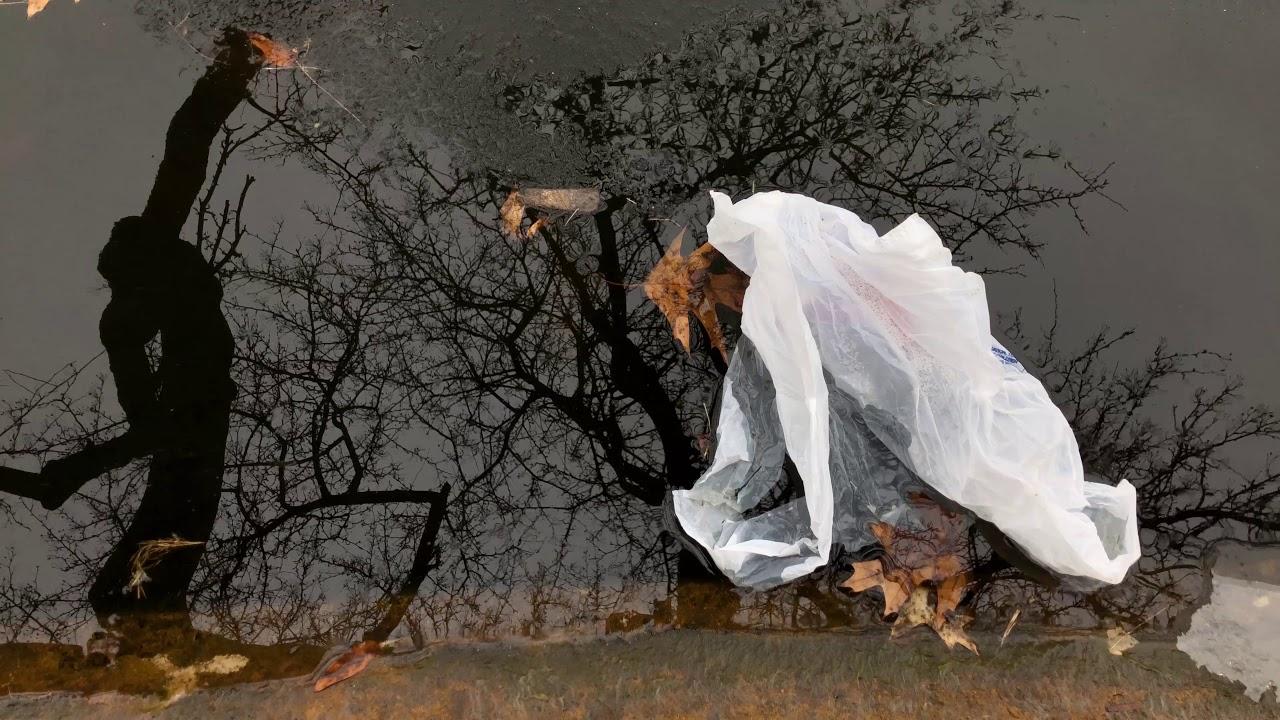 Wade Lagoon (White Plastic Bag 1)