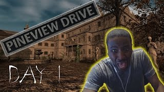 pineview Drive PS4/PC Game Review