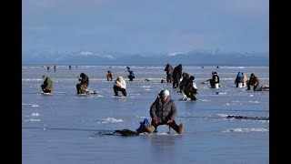 Что твориться на водоёмах Кыргызстана Водохранилище Спартак Зимняя рыбалка