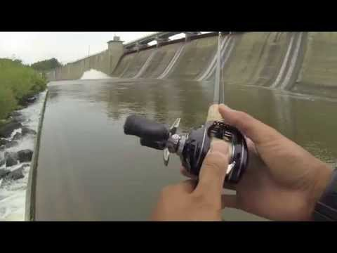 Saugeye and Buffalo Carp Fishing at Hoover Dam