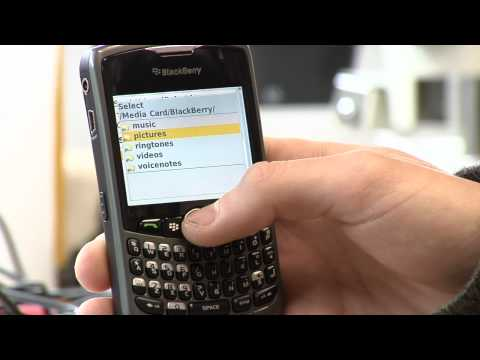 Cell Phones Tips : How to Send Ringtones to Other Phones