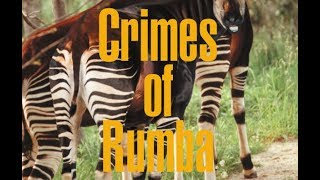 Crimes of Rumba—Volume I Congo Music
