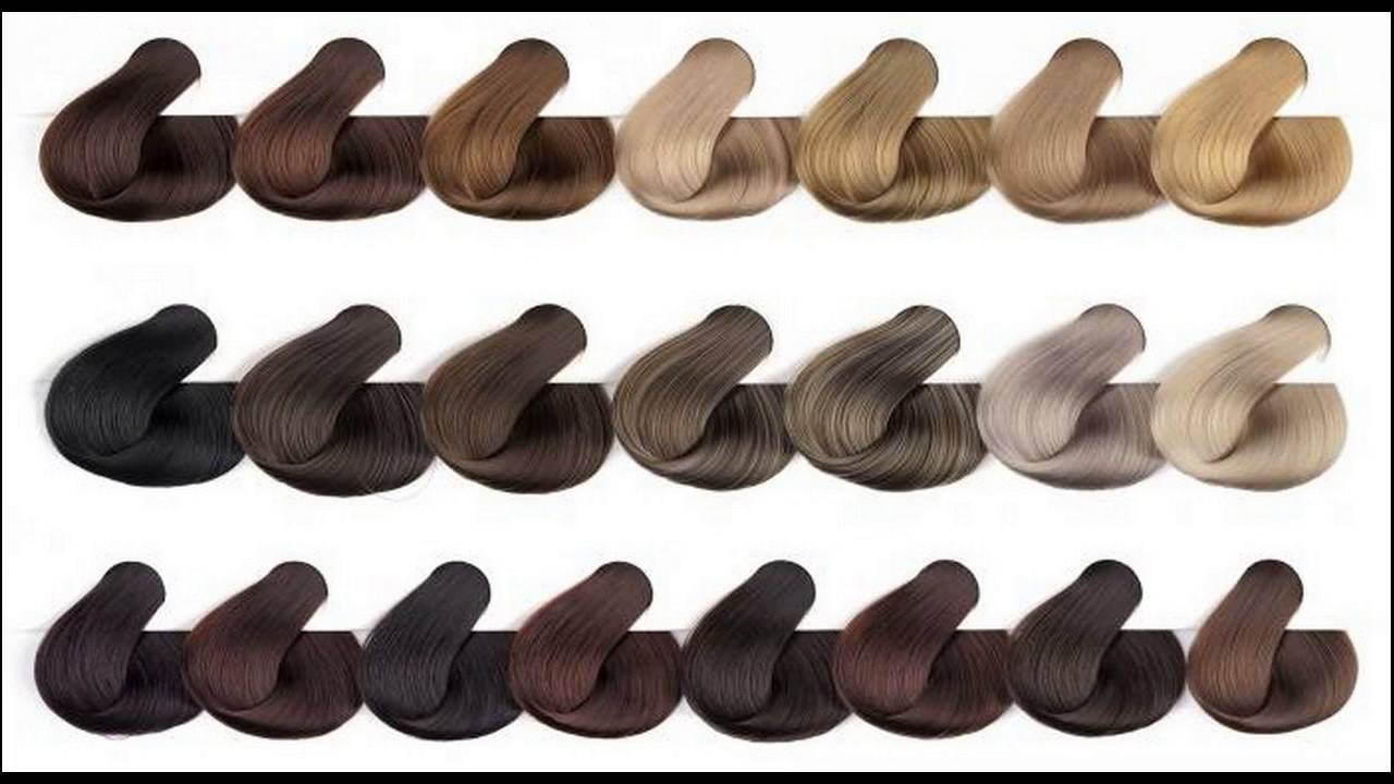 Know about medium ash brown hair color chart also youtube rh