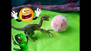ГЛУПЫЙ ДИНОЗАВР И ХИТРЫЙ ХОМКА! Крыса изобретательница и приключения животных
