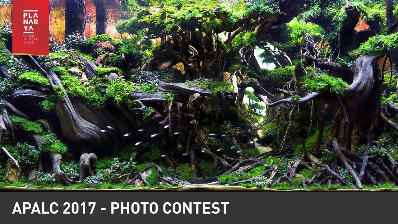 AQUASCAPE PHOTO CONTEST - APALC 2017 - YouTube