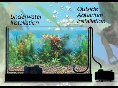How To Set Up A Air Pump In 10gallon Tank