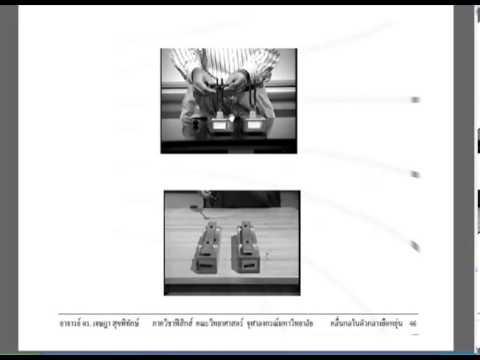 [Physics1] Mechanical Wave คลื่นกลในตัวกลางยืดหยุ่น