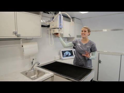 Tour Concierge Mobile Animal Hospital