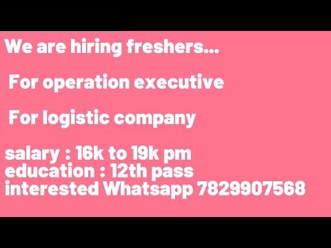 Hiring : Logistics Operation Executive