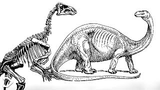 The Crazy Story Of The FIRST Dinosaur Discovery
