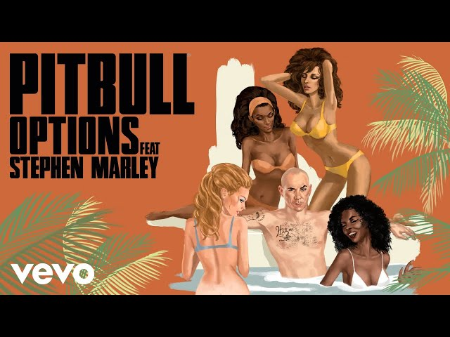 Pitbull - Options (SpydaTEK Remix) [Audio] ft. Stephen Marley