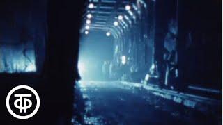 Дом, где тебя ждут (1980)